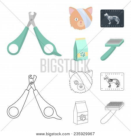 Scissors, Cat, Bandage, Wounded .vet Clinic Set Collection Icons In Cartoon, Outline Style Vector Sy