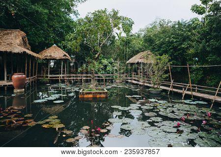 Wooden Footbridge And Beautiful Lotus Flowers In Pond In Hue, Vietnam