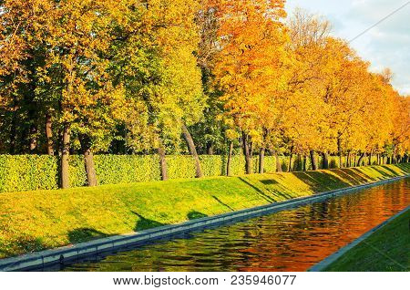 Fall Trees Along The City Channel In Fall Sunny Weather. Fall Landscape.fall Landscape Scene. Fall T