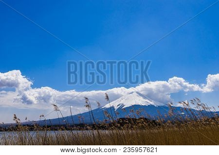 Beautiful View Of Mount Fuji With Cloud At Kawaguchiko Japan