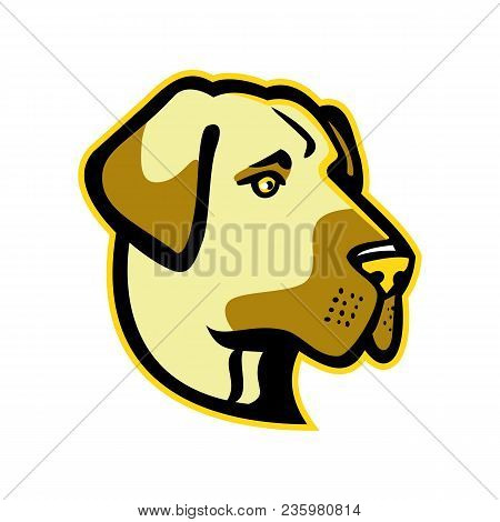 Mascot Icon Illustration Of Head Of A Anatolian Shepherd Dog, Anatolian Blackhead Or Kangal, A  Live