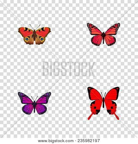 Set Of Beauty Realistic Symbols With Precis Almana, Archippus, Violet Wing And Other Icons For Your
