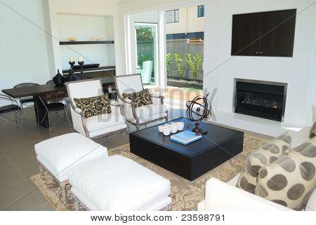 stylish living room with elegant furniture