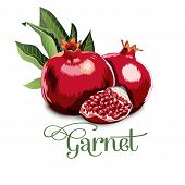 Fresh, nutritious, tasty garnet. Vector illustration. Fruits ingredients in triangulation technique. Garnet low poly poster