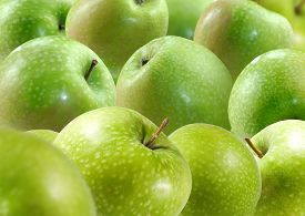 Image Of  Many Green Apples In Garden Closeup