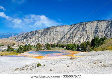 Palette Spring In The Lower Terrace Of Mammoth Hot Springs At Yellowstone National Park With Mount E