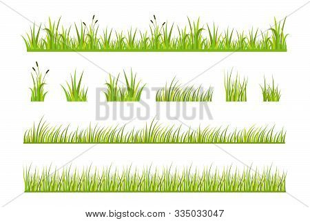 Vector Illustration Of Green Grass, Natural Grass Elements Isolated White Background, Green Grass Bo