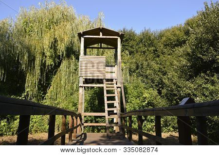 Wooden Birdwatching Post Set In The Middle Of Nature On A Sunny Summer Day