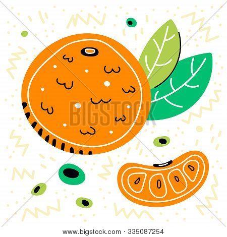 Mandarin Vector Hand Drawn   Illustration. Mandarin With Leaves. Mandarin Slice. Tropical Fruit. Man