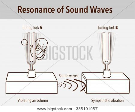 Tuning Fork Resonance Experiment. When One Tuning Fork Is Struck, The Other Tuning Fork Of The Same