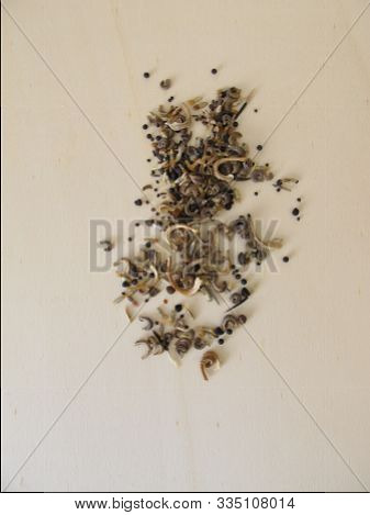 Bee Friendly Seed Mixture With Wildflowers For Balcony And Garden, Wildflower Mix For Wild Bees
