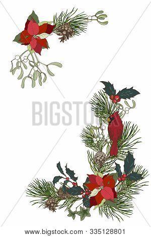 Christmas Plants, Composition Of Pine Branches, Poinsettia, Holly And Mistletoe, Cardinal Bird, Vect