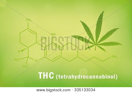 Thc Tetrahydrocannabinol Chemical Formula With Cannabis Leaf Vector Illustration Eps10