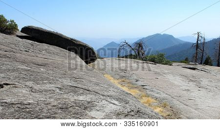 Flat Rock With Tall Trees And Mountain View