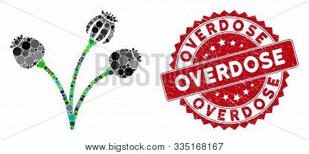 Collage Opium Poppy Plant And Distressed Stamp Seal With Overdose Caption. Mosaic Vector Is Designed