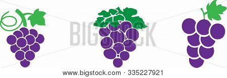 Grape Icon On Color Background Viticulture, Wine, Winery