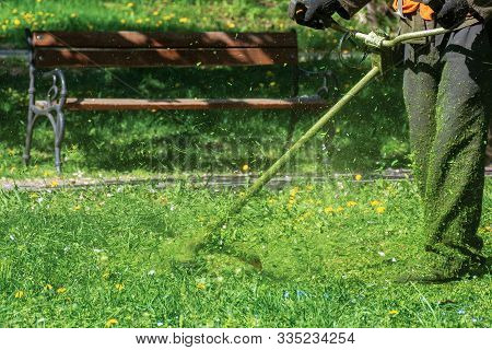 Man In Coveralls With Professional Brush Cutter Mowing Grass In The Park. Green Lawn With Yellow Dan