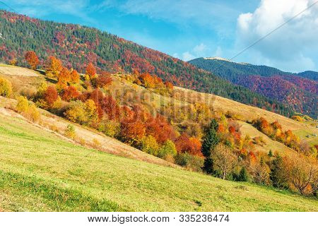 Beautiful Rural Landscape Of Carpathian Mountain. Sunny Weather With Fluffy Clouds On The Sky. Amazi