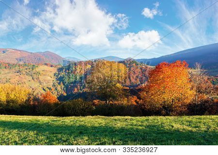 Beautiful Afternoon Autumn Scenery In Mountains. Sunny Weather Gorgeous Sky. Amazing Nature Backgrou