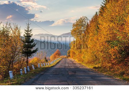 Asphalt Road Through Forested Mountains. Trees In Fall Foliage. Foggy Weather At Sunrise. Glowing Cl