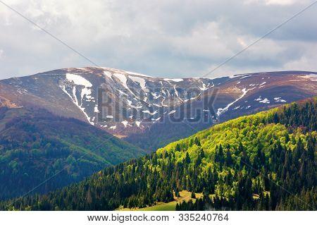 Mountain Hymba View In Springtime. Part Of Borzhava Ridge Of Ukrainian Carpathians Located In Transc