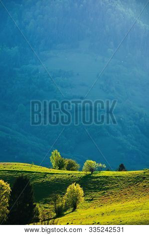 Beautiful Countryside Scenery In Springtime. Mountain Rural Landscape With Grassy Rolling Hills. Won