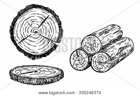 Wood Logs, Trunk Sketch Illustration. Hand Drawn Wooden Materials. Firewood Sketch Set. Annual Rings