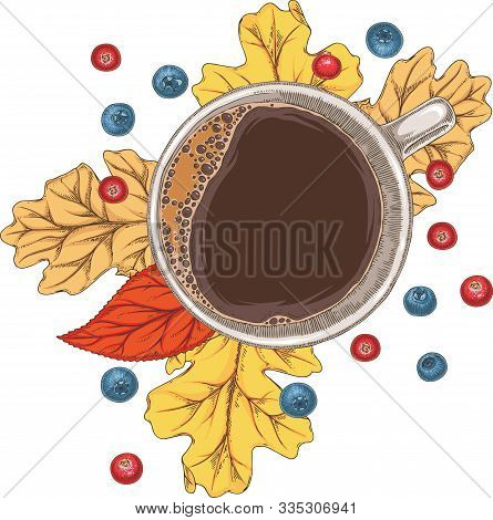 White Cup Of Hot Coffee, Cranberries, Blueberries And Autumn Leaves. Top View. Isolated On A White B