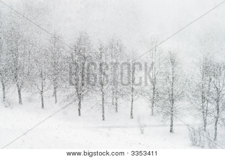 Heavy Snowfalling