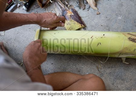 Local People Cut Trunk Of A Banana Into Floating Pieces For Make Krathong For Loy Krathong Festival.