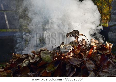 Traditional Rural Burning Tree Leaves, South Bohemia, Czech Republic