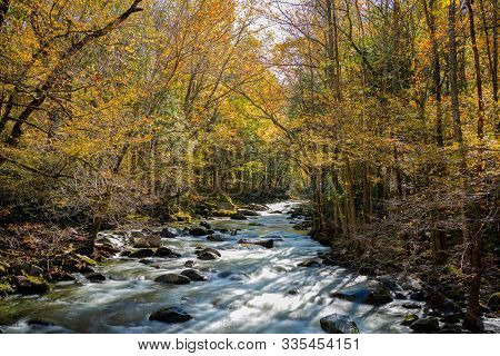 Smokey Mountains National Park Fall Colors, In Gatlinburg, Tn