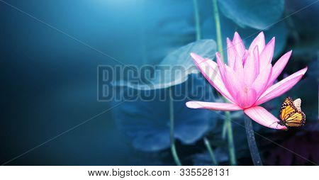 Horizontal banner with beautiful pink lotus flower (water lily) and monarch butterfly (Danaus plexippus, Nymphalidae). Mock up template. Copy space for text