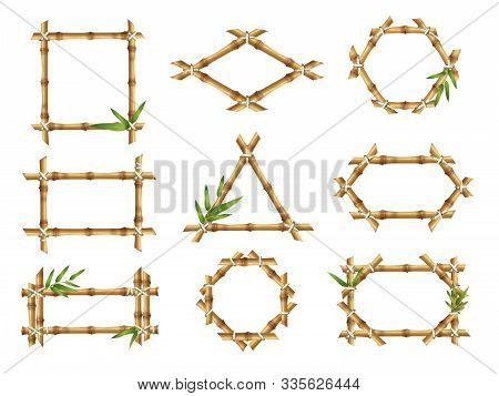 Bamboo Frames. Geometric Forms Of Nature Bamboo Rustic Plants Tropical Objects Japanese Authentic Ve