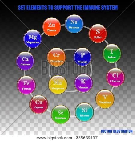 Set Elements And Vitamins To Support Immune System. Vector Illustration With Isolated Transparent Ba