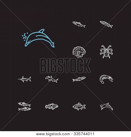 Fish Icons Set. Sardine And Fish Icons With Shrimp, Crucian And Seafood. Set Of Undersea For Web App