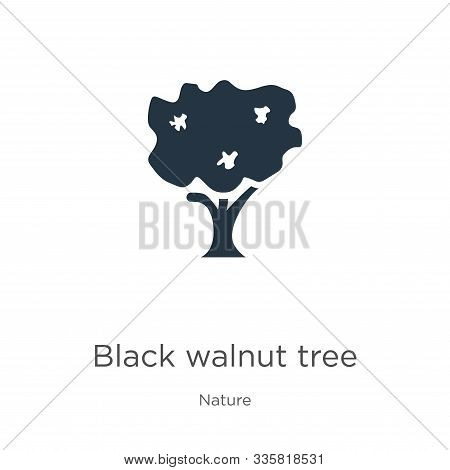 Black Walnut Tree Icon Vector. Trendy Flat Black Walnut Tree Icon From Nature Collection Isolated On