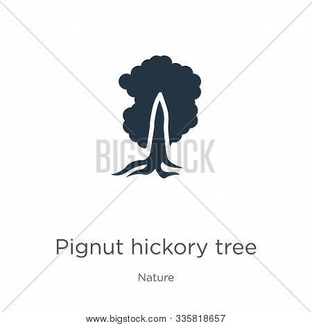 Pignut Hickory Tree Icon Vector. Trendy Flat Pignut Hickory Tree Icon From Nature Collection Isolate