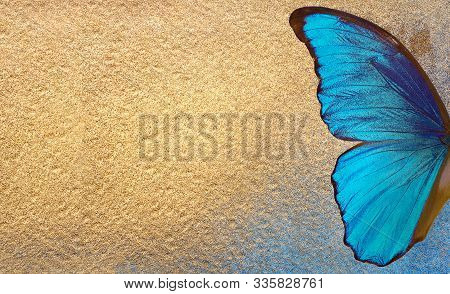Bright Blue Wings Of A Tropical Morpho Butterfly On A Gold Background. Blue And Golden Texture Backg