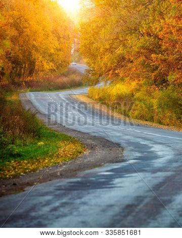 Beautiful view of the autumn road through the forest with sunlight. Location place of Carpathians mountain, Ukraine, Europe. Travel and vacation concept by car. Discover the beauty of earth.