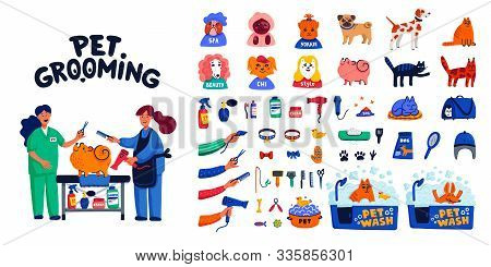 Pet Grooming Big Set. Dog Care, Grooming, Hygiene, Health, Pet Shop, Accessories, Tools, Vets And Do