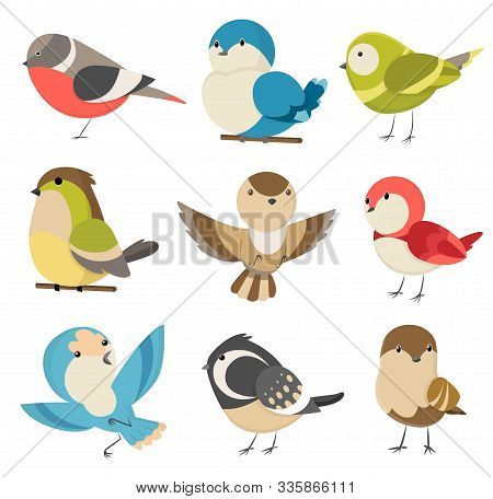 Set Of Cute Little Colorful Birds Isolated On White Background. Common House Sparrow Couple, Male An