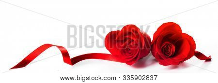 Hearts of red roses and curly ribbons isolated on white background Valentines day design