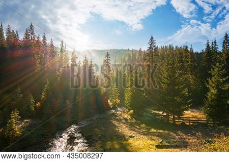 Countryside Landscape With Spruce Forest In The Valley. Wonderful Outdoor Nature Background At Sunri