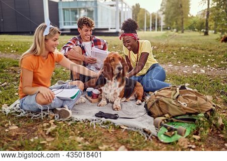 Three students.Students in a park.Smiling college student reading books
