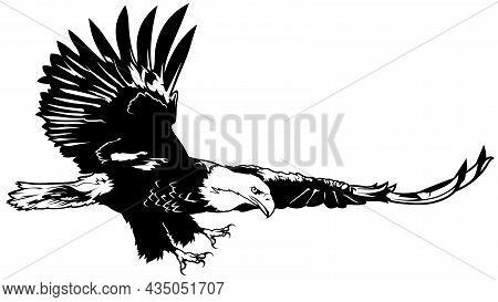 Flying Bald Eagle - Black Illustration Isolated On White, Vector