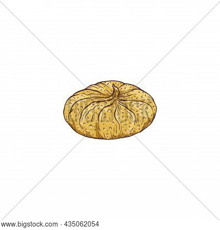 Dried Preserved Fig Fruit Hand Drawn Sketch Vector Illustration Isolated.