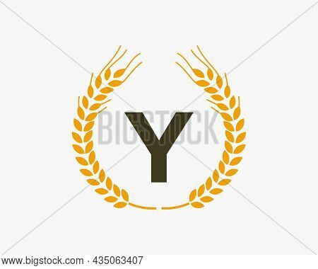 Agriculture Wheat Logo On Y Letter. Letter Y Agriculture Logo Design Template, Food, Healthy Nutriti