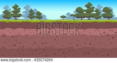 Underground Soil Layers Ground Layer With Grass And Trees Archeology Landscape Horizontal