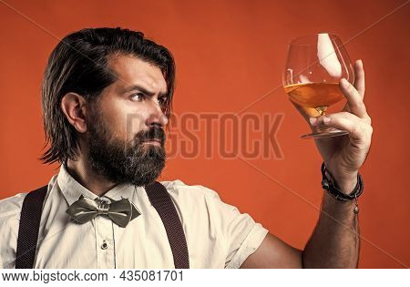 Tasting And Drink Scotch Whiskey. Bearded Man In Suspenders Drinking Rum Glass. Elegant Businessman